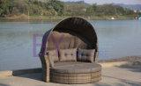 分解の折るテントによって結合される屋外の寝台兼用の長椅子によって422