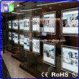 Real Estate에 Property Showcase Used를 위한 결정 LED Window Light Box