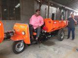 중국 강력한 3개의 바퀴 전기 /Diesel 기관자전차 모터 세발자전거 /Goods /Tricycle
