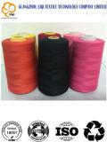 Textile d'amorçage de couture tourné par faisceau de polyester