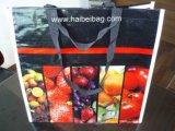 再使用可能なPPによって編まれる袋、トートバック、ショッピング・バッグ