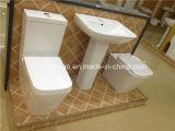 Toilette en céramique en deux pièces d'économie de l'eau de fournisseur de lavage à grande eau sanitaire normal australien d'articles (2051A)