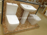 Australisches Standardwasserzeichen und Wels Zustimmungs-Lieferanten-gesundheitliche Ware-Ganzwäsche-zweiteilige keramische Wasser-Einsparung-Toilette (2051A)
