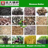 Combustibile della buccia del riso della biomassa prezzo della caldaia da 2 tonnellate