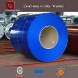Couleur Coated Steel Sheet Coil pour Decoration (CZ-C27)