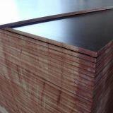 A madeira compensada enfrentada película do Junção-Dedo, Um-Tempo-Quente-Pressiona a madeira compensada da construção, película preta