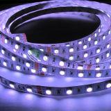 Indicatore luminoso di striscia flessibile di alta qualità SMD5050 RGB LED (60LEDs/m)