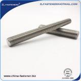 De Ingepaste Staaf van het Roestvrij staal DIN976 DIN975 Ss304