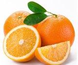 Oranje Uittreksel, het Poeder van het Oranje Uittreksel, Natuurlijk Oranje Uittreksel