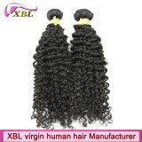 Cheveux bouclés crépus brésiliens de vente chauds de Remy de Vierge