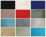 Le sofa sectionnel coloré contemporain de cuir véritable a placé (GLS-025)