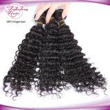 Não garantir nenhum derramamento de nenhuma extensão brasileira Tangling do cabelo humano do Virgin profundo da onda