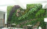 녹색 벽 구 Wall05182958의 고품질 인공적인 플랜트 그리고 꽃
