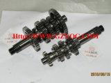 Yog Motorrad-Ersatzteil-Motor-Mädchen-Zählerwelle-komplettes Hauptspindel-Getriebe
