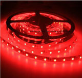 60 LEDs / m solo color (rojo / verde / azul / amarillo / blanco) antisalpicaduras IP65 LED luces de tira