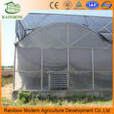Agricultura de bajo costo 200 micrones de plástico resistente a los rayos UV po túnel invernadero de túnel