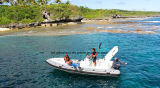 Aqualand 22feet 6.45m Rigid Inflatable Fishing BoatかRib Motor Boat (650C)