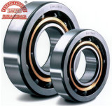 높은 Limiting Speed Deep Groove Ball Bearing (6001의 시리즈)