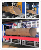 Máquina del corte del plasma del tubo para el corte del tubo