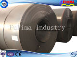 Plaque en acier/bobine laminées à froid pour le matériau de construction (FLM-RM-032)