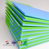 Panneau en plastique ondulé de feuille en plastique ondulée colorée