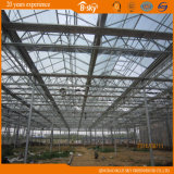 VielzweckBeautiful Glass Greenhouse mit Venlo Structure
