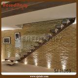 Diseño moderno de vidrio y acero escalera de madera (SJ-X1069)