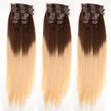 Hair Extension에 있는 가득 차있는 Head Double Drawn Triple Weft Ombre Cheap 100%년 Human Remy Hair Quad Weft Clip