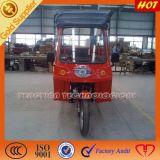 Triciclo Closed do passageiro dos povos dos adultos 6 da alta qualidade de China
