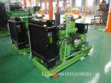 10-50kw de Generator van de Macht van het biogas voor Landbouwbedrijf met Ce ISO