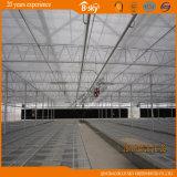 Venloの屋根の農業のポリカーボネートシートの温室