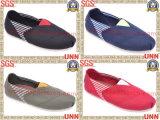 Chaussures de toile occasionnelles de conception (SD6038)