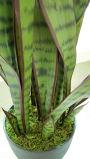 Beste Verkopende Kunstmatige Installaties en Bloemen van Sanseveria 1091-27-9b