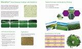 Retardar o fertilizante da liberação