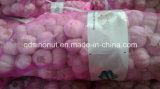 White cinese Garlic 10kg 20kg Mesh Bag