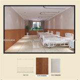 壁デザイン2 (W2)のための防水装飾的なWPCの壁パネル