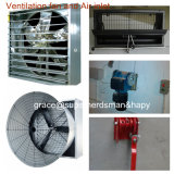Set pieno Automatic Poultry Equipment per Broiler Production