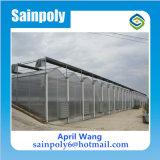 Aquaponicsのプロジェクトのための低価格のパソコンシートの温室