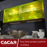 La Banca di vita dell'armadio da cucina di cristallo del comitato di stile naturale della molla (CA09-11)