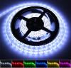 Flexible der RGB/White Farben-LED Seil-Leuchte Streifen-der Leuchte-LED
