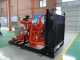 글로벌 시장 세륨 판매를 위한 표준 AC 삼상 300W 목제 가스 발전기