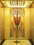هيدروليّة بيتيّة دار مصعد في مسافر مصعد ([رلس-233])