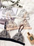 Sujetador atractivo del cordón de la ropa interior europea de las señoras y diseño de Panty nuevo