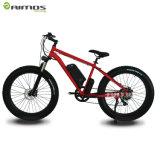 36V 350W fetter Gummireifen-Strand-elektrisches Fahrrad mit Panasonic-Batterie