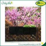 Verticale esterno di Onlylife che fa il giardinaggio caselle non tessute del giardino 4 della parete di attaccatura che piantano la piantatrice della parete del semenzale dei sacchetti