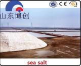 Het Type van natrium-chloride en het Industriële StandaardNatrium-chloride van de Rang van de Rang