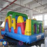 Coco-Wasser-Entwurfs-aufblasbare Hindernis-Kombination LG9082