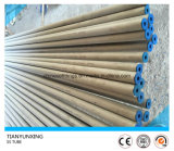 Ss Seamless Pipe Acero inoxidable capilar