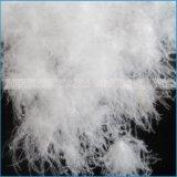 L'oca lavata bianca giù mette le piume al riempimento per il cappello a cilindro del materasso