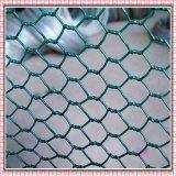 Het hexagonale Gelaste Netwerk van de Draad met Concurrerende Prijs